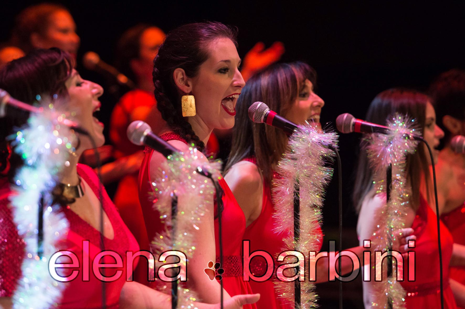 Elena Barbini fotografa concerto BluBordò al Teatro Verdi di Padova